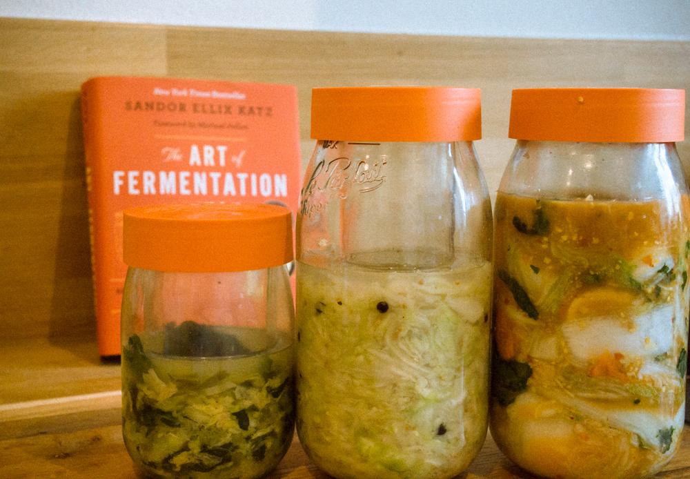 """""""Fermentations!"""" de Sandor Felix Katz 3"""